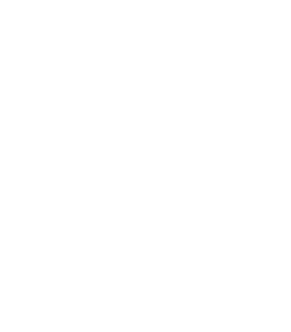 logo disar white