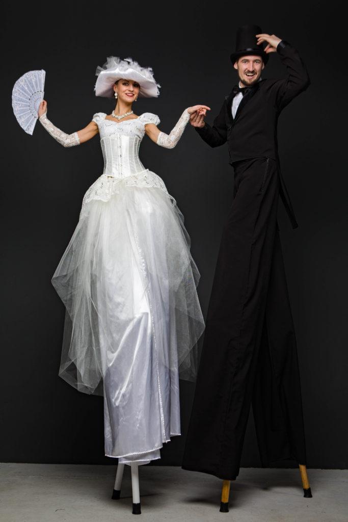 ходулисты черно-белая пара