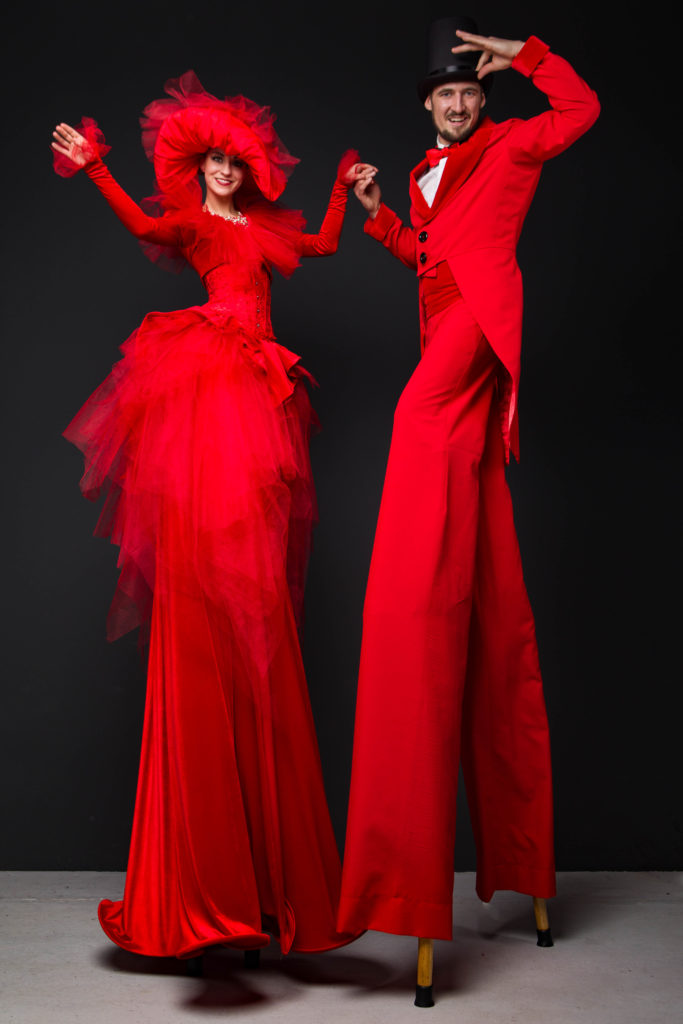 красная пара ходулистов